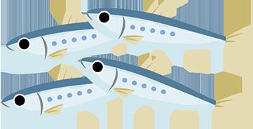 sardinas o boquerones
